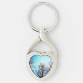 DayDreams - key-ring crow keeps the guard! Keychain