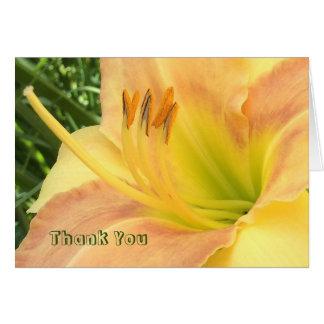 "DAYLILY ""Blond Baby"" --- Yellow green orange. Card"