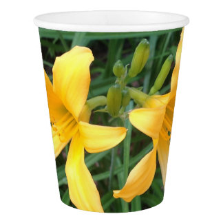 """DAYLILY """"Downey"""" Duo --- Paper Cup"""