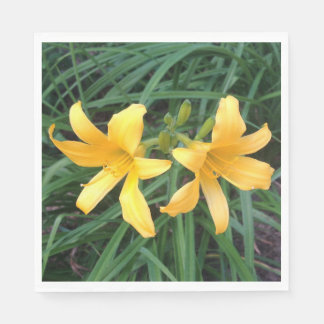"DAYLILY ""Downey"" Gold Duo --- Paper Napkins"