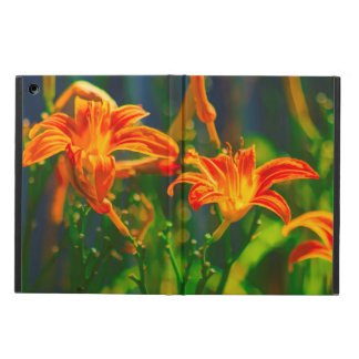 Daylily Trio iPad Air Case