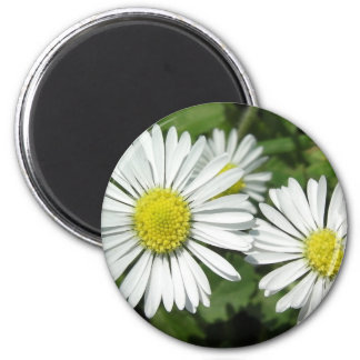 """""""Dayzed"""" Collection 2 Inch Round Magnet"""