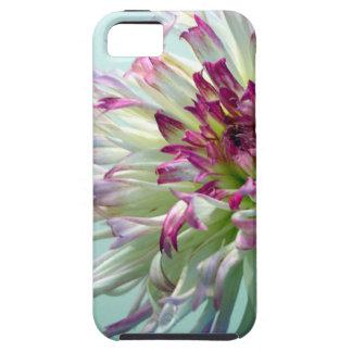 Dazzle Me, Dahlia! iPhone 5 Covers