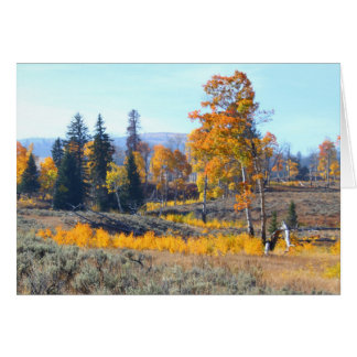 Dazzling Fall Colors Card