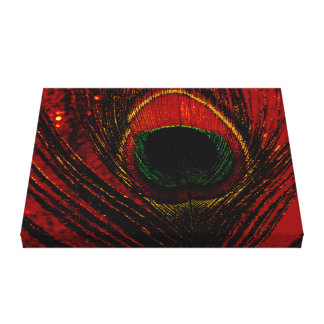 Dazzling Peacock Canvas Print
