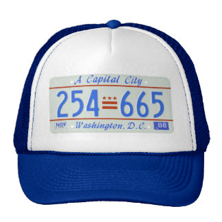 DC88 TRUCKER HAT