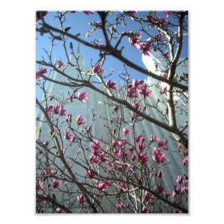 DC Temple in Pink Flowers Photo Print
