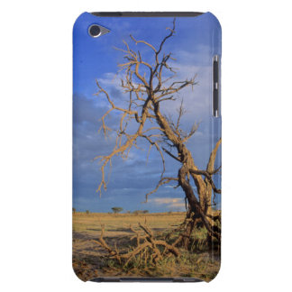 Dead Camel Thorn (Acacia Erioloba) Tree Case-Mate iPod Touch Case