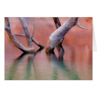 Dead Cottonwood Trunks in Lake | Utah Card