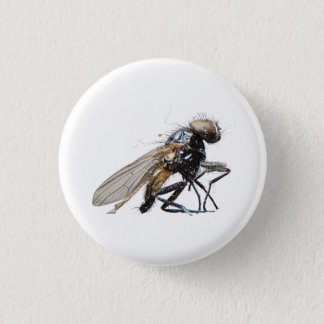 Dead Fly 1 Inch Round Button