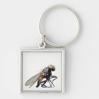 Dead Fly Keychain