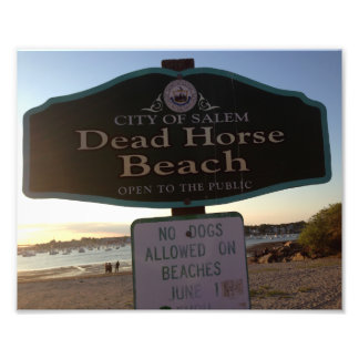 Dead Horse Beach Sign Salem MA 8x10 Photo Print
