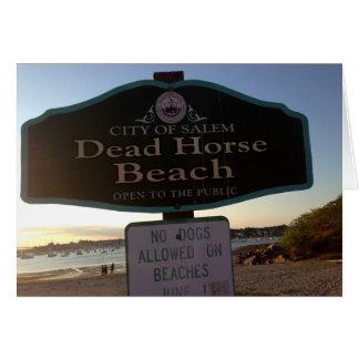 Dead Horse Beach Sign Salem MA Photo Greeting Card