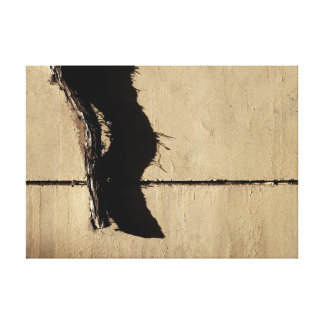 Dead Ivy Vine and Shadow Canvas Print