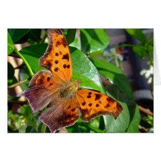 Dead Leaf Butterfly Card