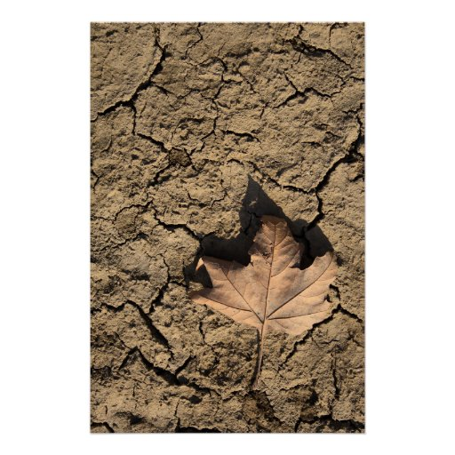 Dead Leaf on Dry Dirty Soil - Autumn Photography Poster
