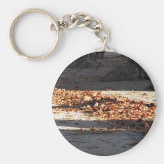 Dead leaves lying on the ground in the fall basic round button keychain