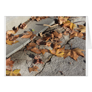Dead leaves lying on the ground in the fall card