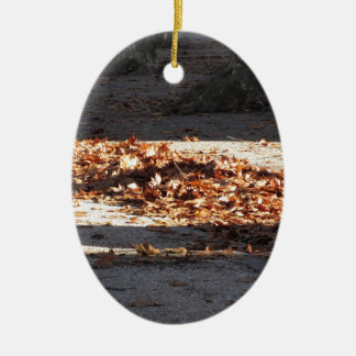 Dead leaves lying on the ground in the fall ceramic oval ornament