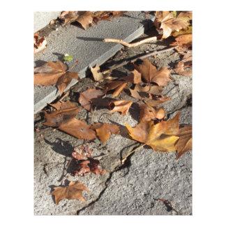 Dead leaves lying on the ground in the fall custom letterhead