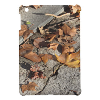 Dead leaves lying on the ground in the fall iPad mini case