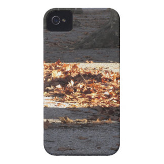 Dead leaves lying on the ground in the fall iPhone 4 Case-Mate cases