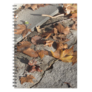 Dead leaves lying on the ground in the fall notebook