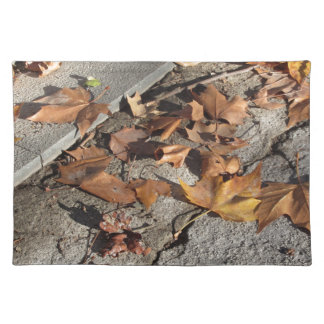 Dead leaves lying on the ground in the fall placemat