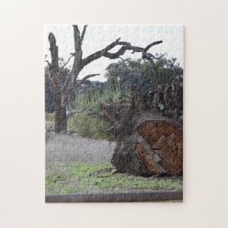 Dead Tree Puzzle
