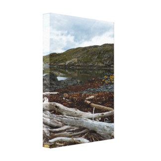 Dead trees lying at the sea canvas print