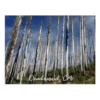 Deadwood, CA with text post card