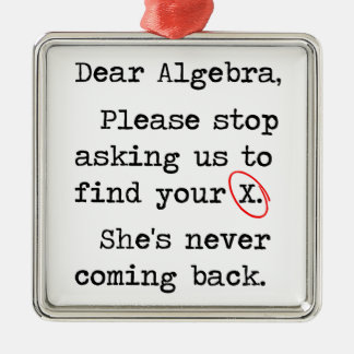 Dear Algebra Please Stop Asking Us To Find Your X Metal Ornament