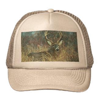 Dear / Buck / White-tailed Deer Trucker Hat