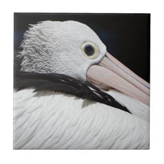 Dear Pelican Ceramic Tile