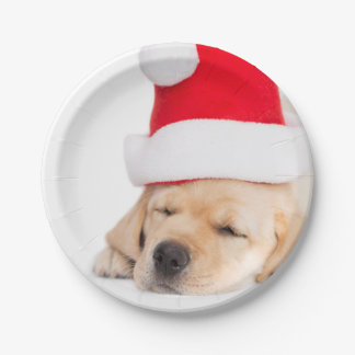 Dear Santa Dreams Paper Plate
