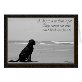 Death of a pet, dog death, sad, dog looking out card