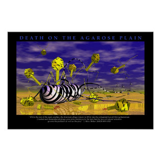 Death on the Agarose Plains Poster