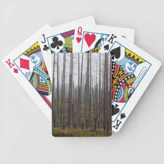 Death spruce trees bicycle playing cards