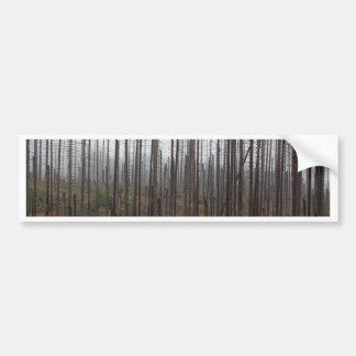 Death spruce trees bumper sticker