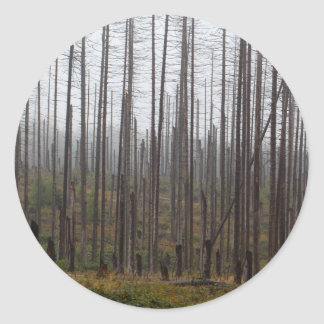 Death spruce trees classic round sticker