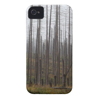 Death spruce trees iPhone 4 case