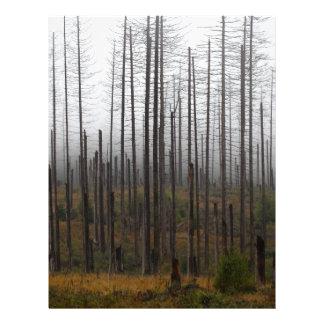 Death spruce trees letterhead