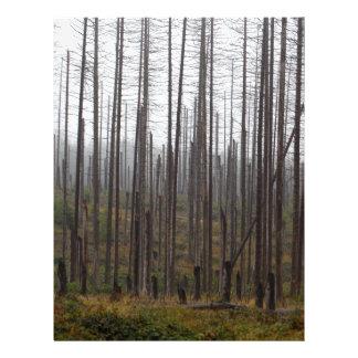 Death spruce trees letterhead design