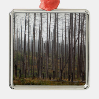 Death spruce trees metal ornament
