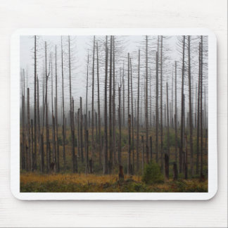 Death spruce trees mouse pad