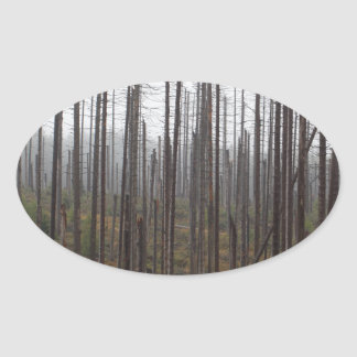 Death spruce trees oval sticker