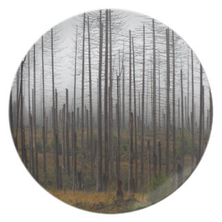 Death spruce trees plate