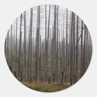 Death spruce trees round sticker