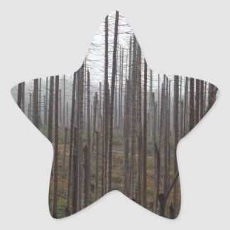 Death spruce trees star sticker