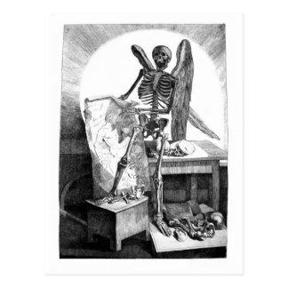 Death Studies Mans Anatomy postcard